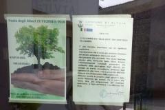 festa degli alberi (5)
