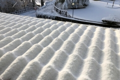neve serrastretta (4)